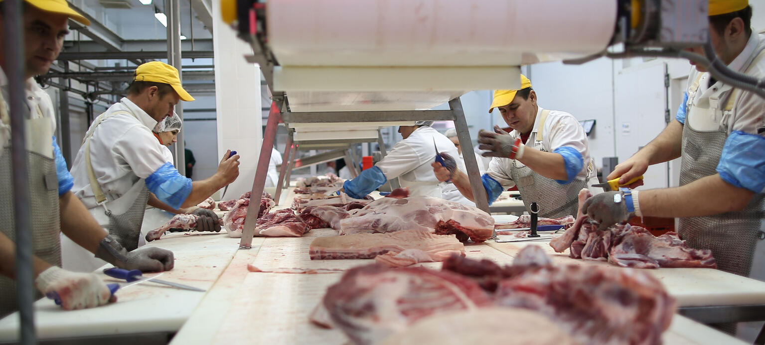 Beyond protection towards democratizing work in the meat industry ...
